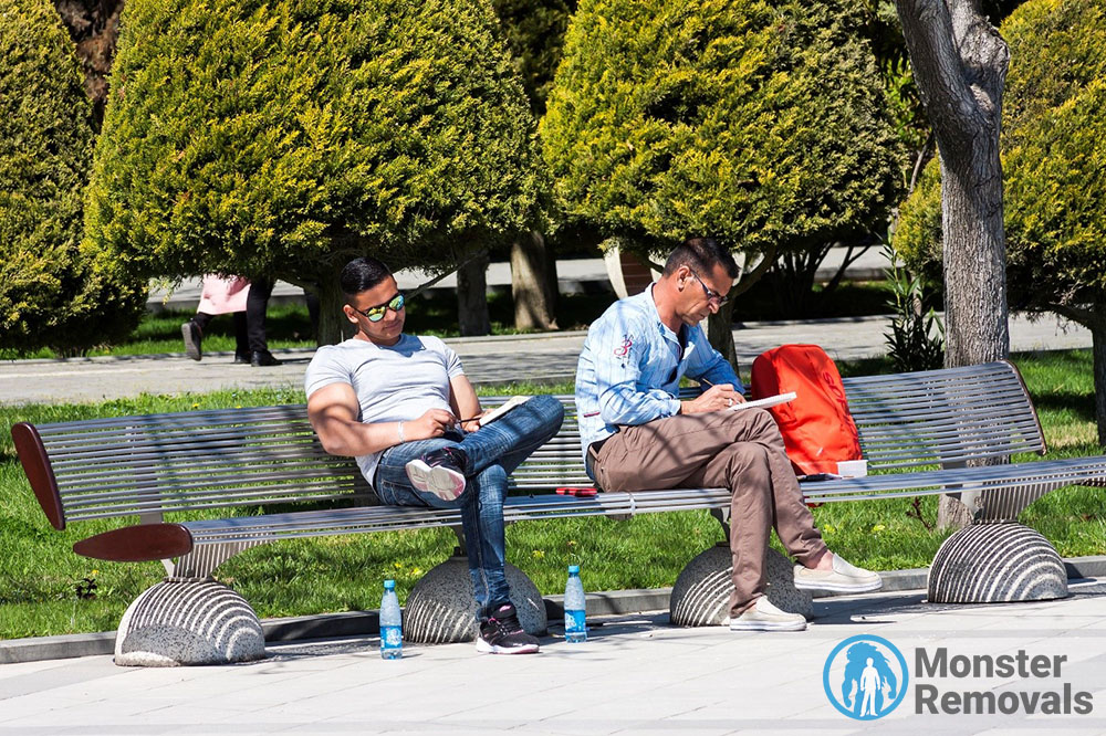 Men reading in a park